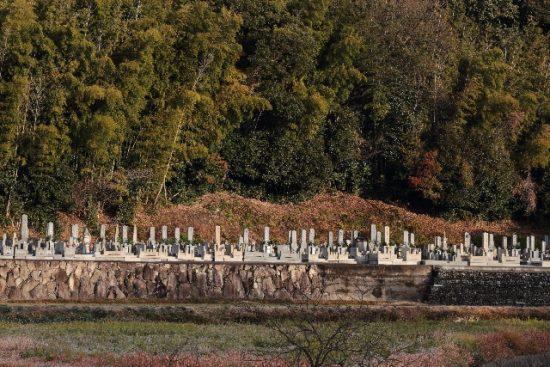 おすすめ小説、八つ墓村