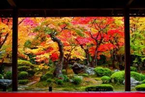 京都を舞台にした小説