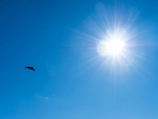 京極夏彦の姑獲鳥の夏