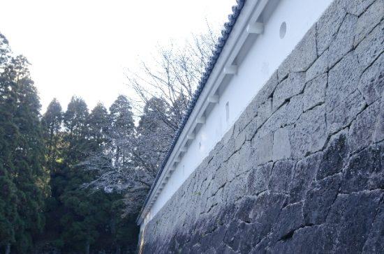 のぼうの城和田竜