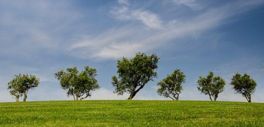 シルバーウィークは自然に触れ合う