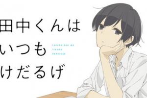 田中くんはいつもけだるげってどんなアニメ?