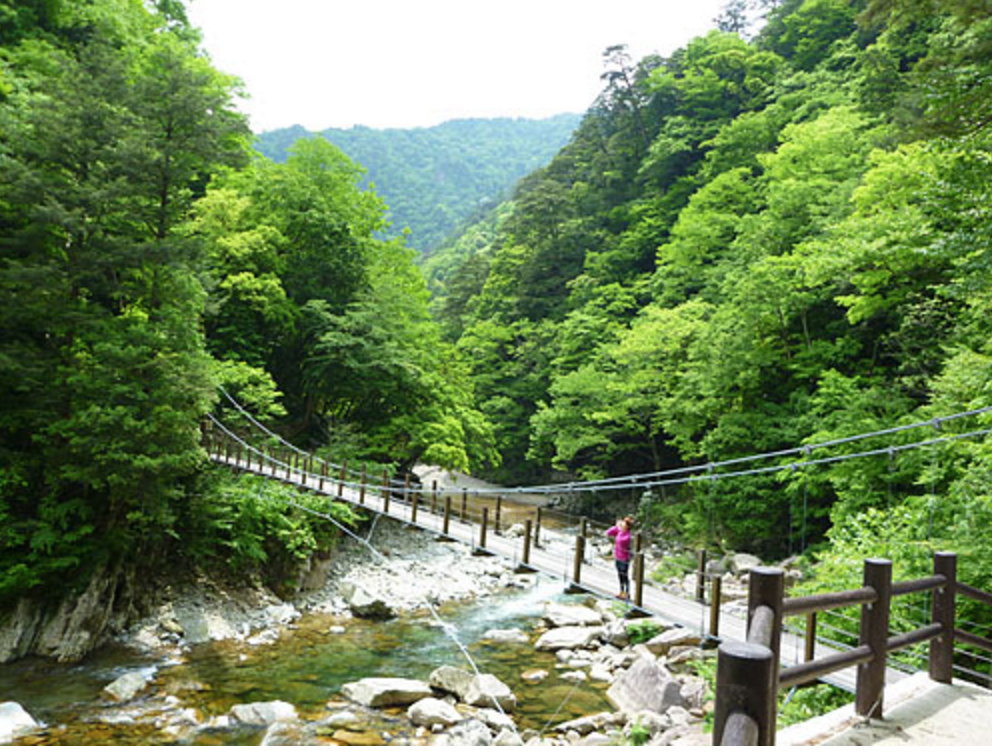 日本百景の名勝!夏は広島県にある美しい峡谷「三段峡」に観光してみよう!